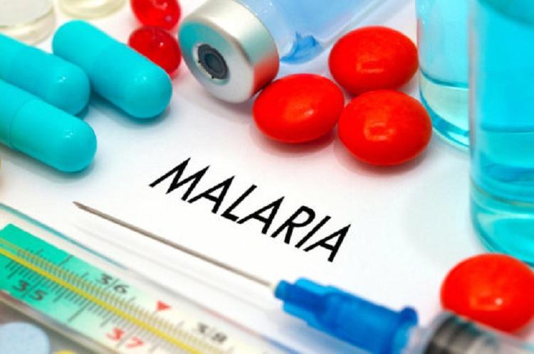 malaria treatment